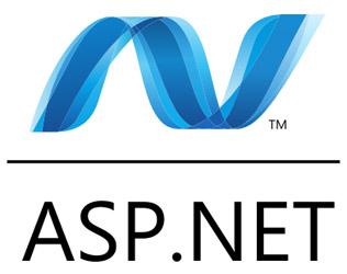 .net-Custom Application